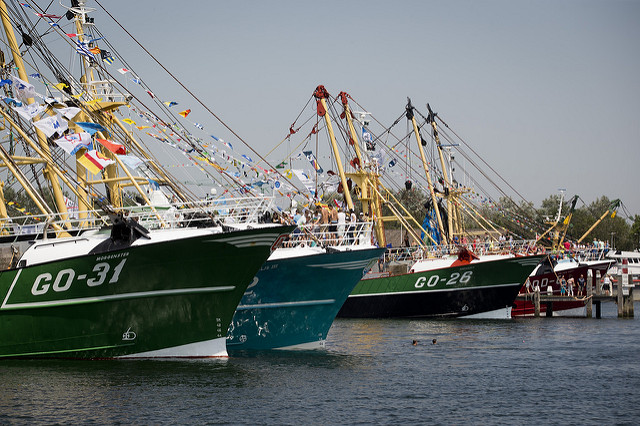 Dutch fishing vessels